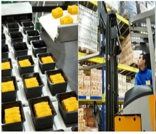 食品与饮料机械手自动化